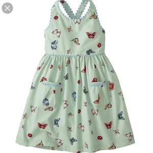 Hanna Andersson  flutter and buzz dress 110